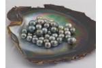 Vznik a pôvod perál