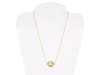 Oceľový náhrdelník - lev - zlatý