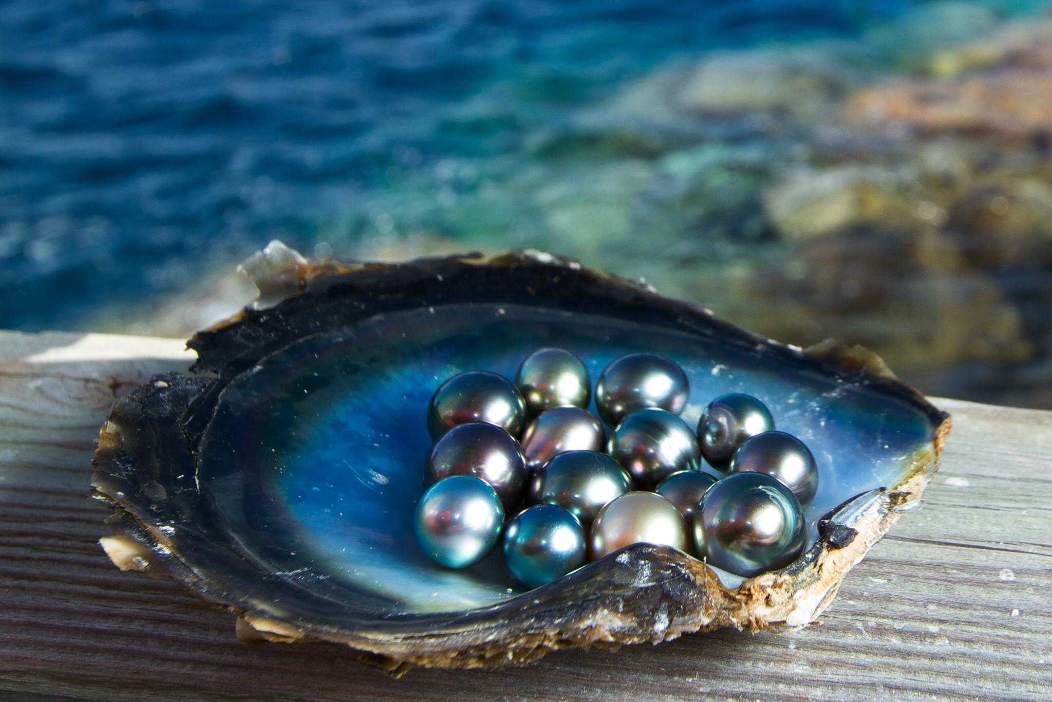 Prírodné perly